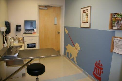 Lakeside-Animal-Hospital-Dog-Exam-Room-1